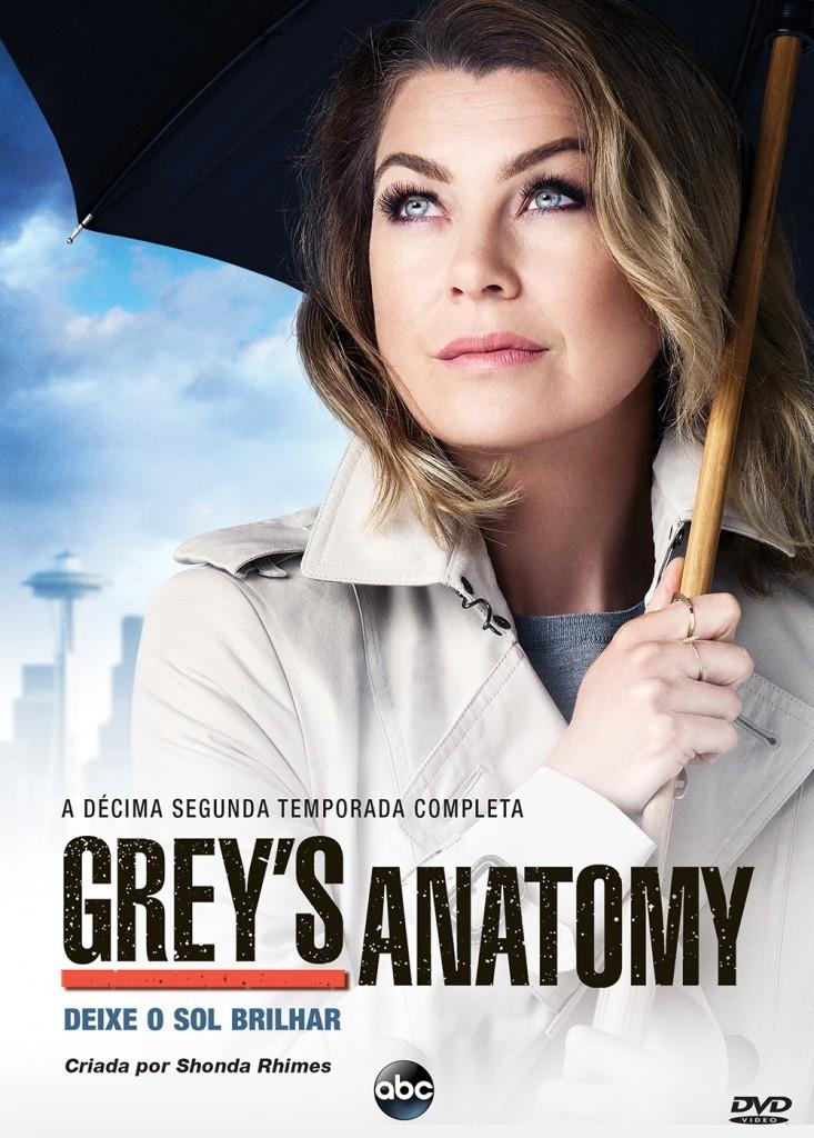 Greys Anatomy10_DVD